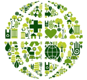 Sustainable Supply Chain & LEED v4
